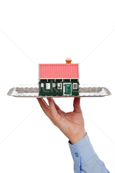 Real estate offer Stock photo © joseph73