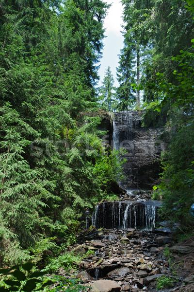 Yağış miktarı güzel çağlayan orman doğa manzara Stok fotoğraf © joseph73