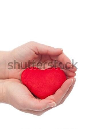 защищенный сердце красный женщину рук здоровья Сток-фото © joseph73
