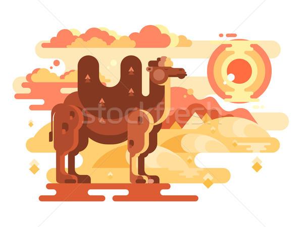 верблюда пустыне животного путешествия природы Сток-фото © jossdiim