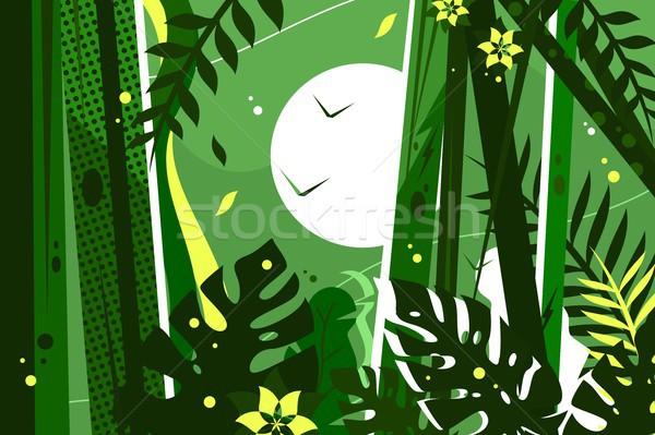 зеленый джунгли листьев цветы древесины Сток-фото © jossdiim
