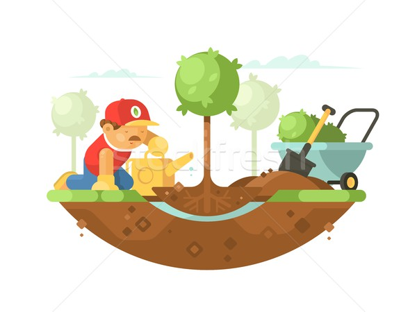Gardener watering seedling Stock photo © jossdiim