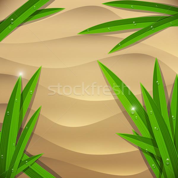 Tengerparti homok nedves vektor tengerpart virág terv Stock fotó © Jugulator