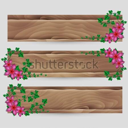 Ivy esotiche fiore decorato vettore legno Foto d'archivio © Jugulator