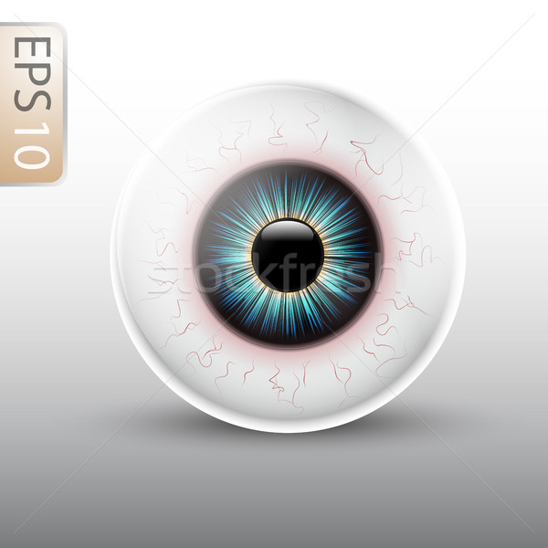 Eyeball Illustration Stock photo © Jugulator