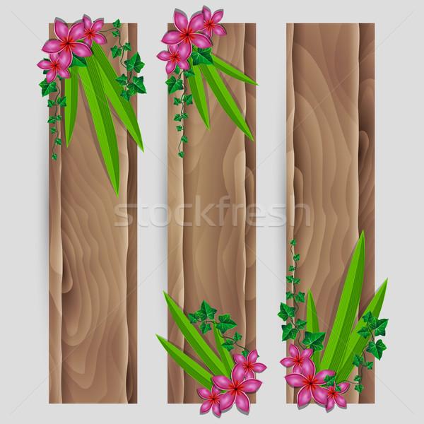ツタ エキゾチック 花 装飾された ベクトル 木材 ストックフォト © Jugulator