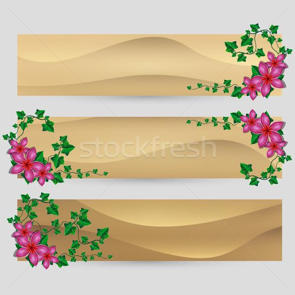 Borostyán levél virágok díszített vektor homok Stock fotó © Jugulator