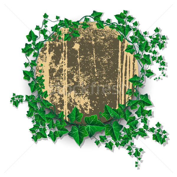 Ivy leaf decorated grunge rounded banner Stock photo © Jugulator