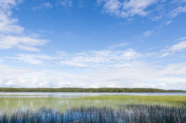 озеро пейзаж лет Финляндия природного воды Сток-фото © Juhku