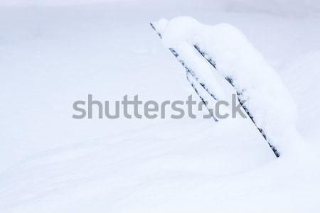 Stock photo: Windshield wipers covered in snow