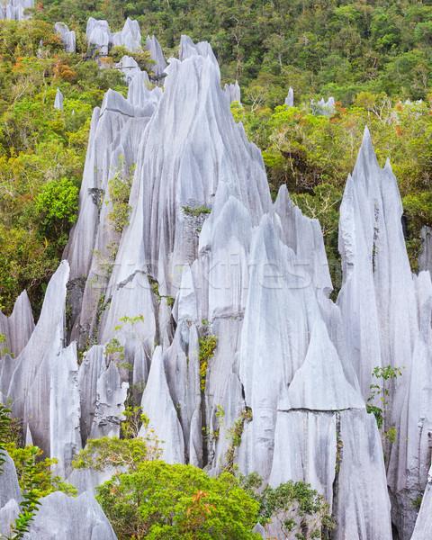 известняк парка образование Борнео Малайзия лес Сток-фото © Juhku