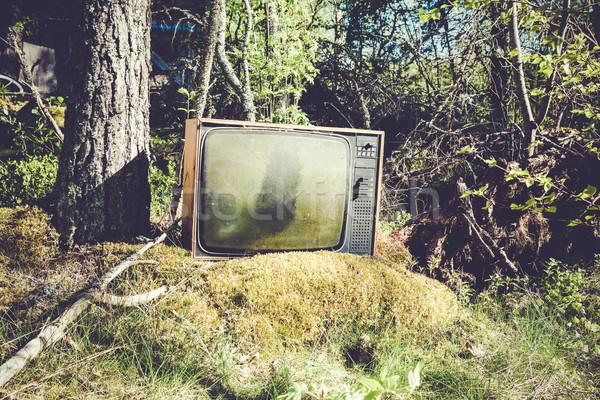 Vieux analogique télévision forêt abandonné herbe Photo stock © Juhku
