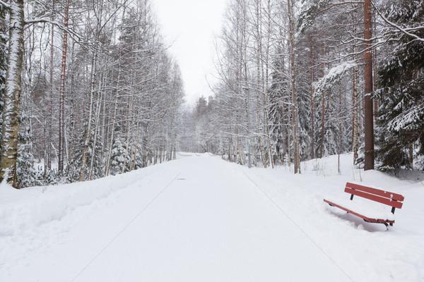 Weg park winter sneeuw gedekt bos Stockfoto © Juhku