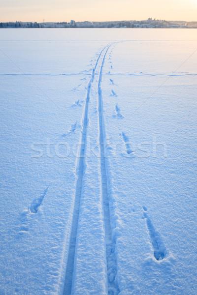 Сток-фото: лыжных · снега · озеро · зима · Финляндия · закат