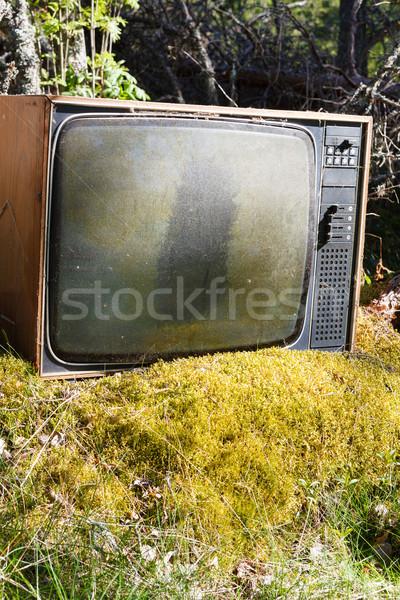 古い アナログ テレビ 森林 捨てられた 草 ストックフォト © Juhku