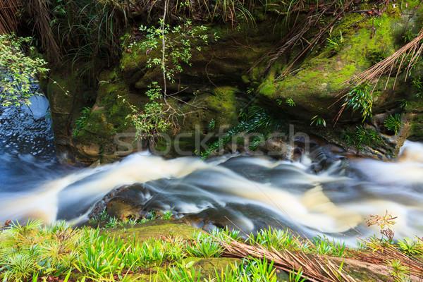 小 瀑布 叢林 公園 馬來西亞 婆羅洲 商業照片 © Juhku