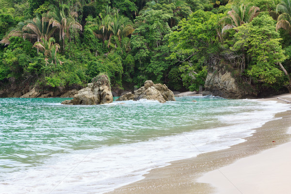 Exotic beach Manuel Antonio Costa Rica Stock photo © Juhku