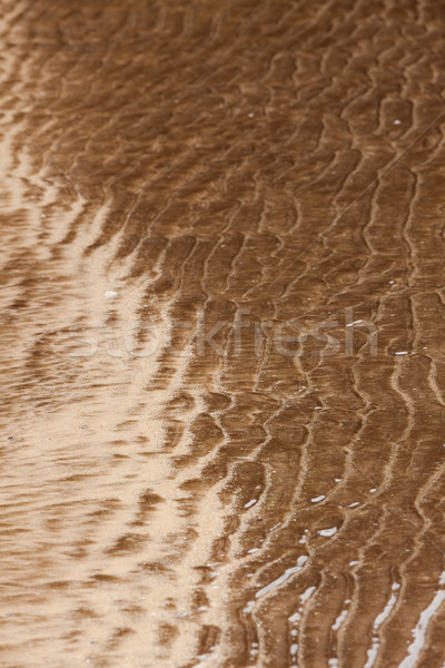 Natural sand patterns in beach Stock photo © Juhku