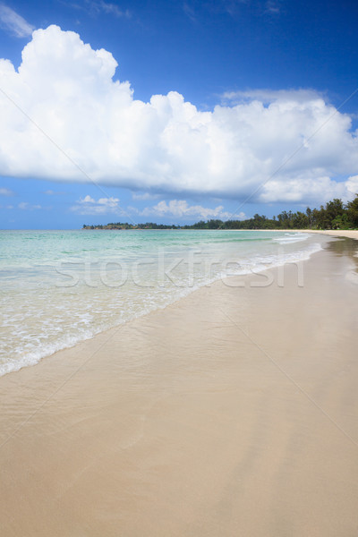 Longtemps sable plage pointe fond été Photo stock © Juhku