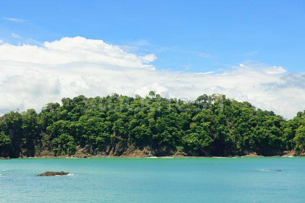 Océano forestales acantilado Costa Rica agua mar Foto stock © Juhku