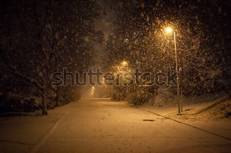 a lot of snowfall and empty walkway Stock photo © Juhku