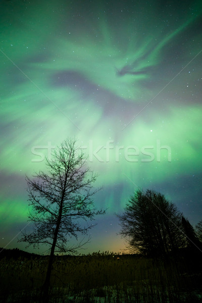 Stock photo: Northern lights aurora borealis landscape