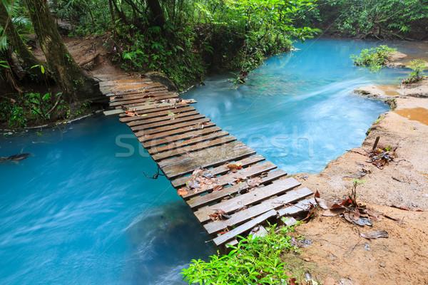 Рио небольшой моста парка Коста-Рика Сток-фото © Juhku