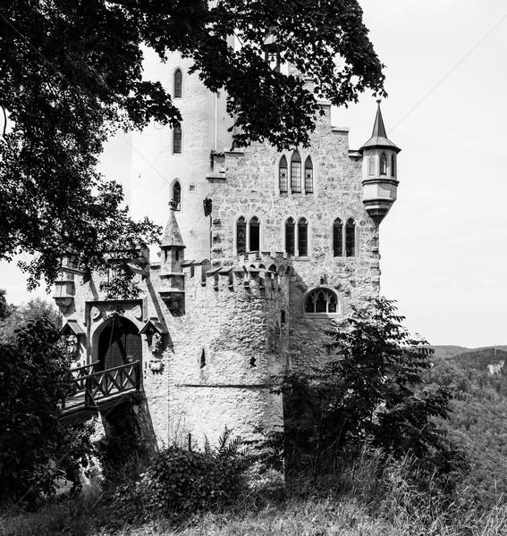 Lichtenstein castle behind trees Stock photo © Juhku