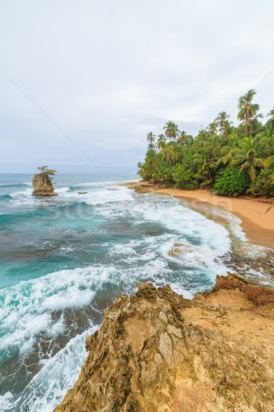 Idyllisch strand Costa Rica tropisch strand hemel water Stockfoto © Juhku
