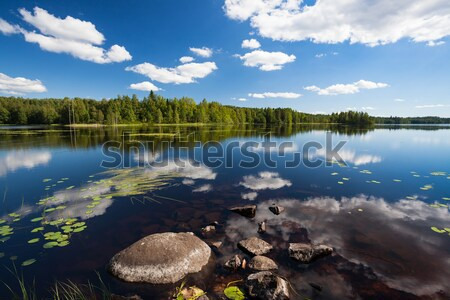 Słoneczny jezioro krajobraz Finlandia wody Zdjęcia stock © Juhku
