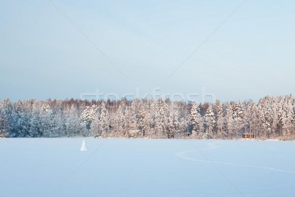 зима озеро декораций Финляндия вечер закат Сток-фото © Juhku