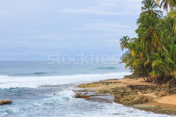Idilli tengerpart Costa Rica trópusi tengerpart égbolt erdő Stock fotó © Juhku