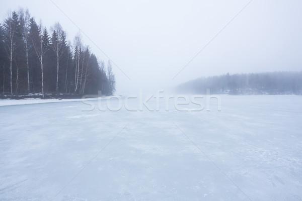 Stockfoto: Mist · bevroren · meer · landschap · bos · ijs