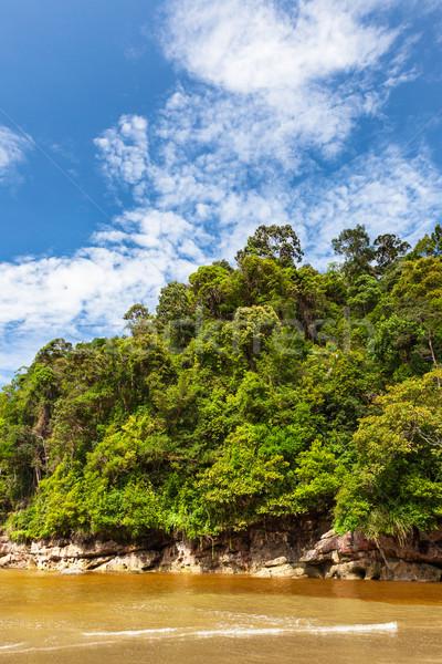 Sűrű dzsungel kék ég domb víz erdő Stock fotó © Juhku