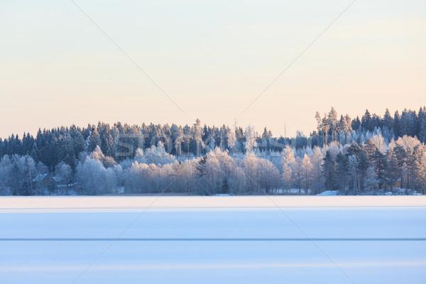 Inverno lago scenario Finlandia sera tramonto Foto d'archivio © Juhku