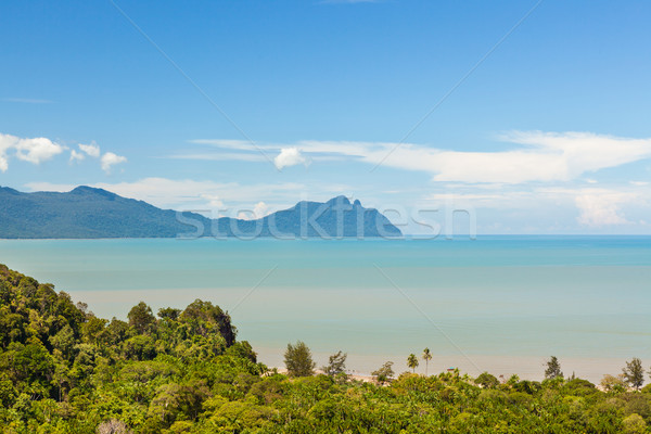 Tropicales paisaje selva colinas Malasia borneo Foto stock © Juhku