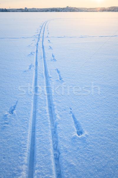 Ski tracks snow lake Stock photo © Juhku