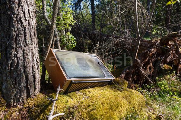 Starych analog telewizji lasu opuszczony charakter Zdjęcia stock © Juhku
