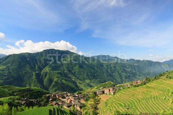 Stock fotó: Tájkép · fotó · rizs · falu · Kína · déli