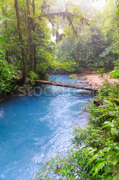 Rio celeste and small wooden bridge Stock photo © Juhku