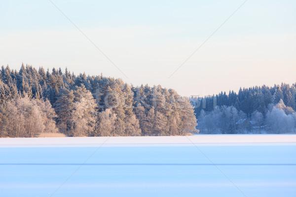 Inverno lago scenario Finlandia sera panorama Foto d'archivio © Juhku