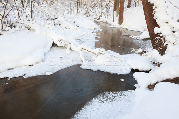 Small stream in winter forest Stock photo © Juhku