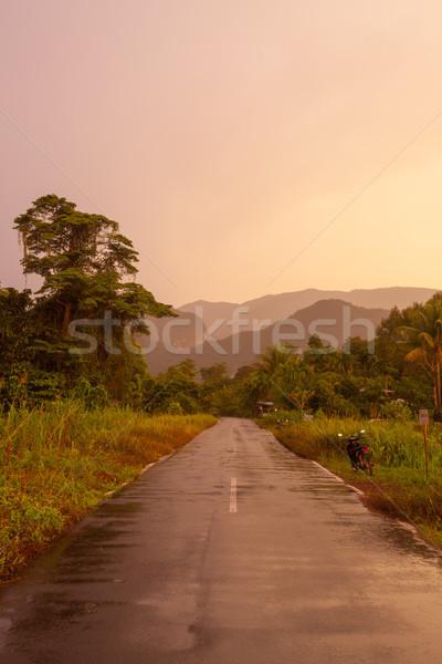 Road to gunung mulu national park Stock photo © Juhku