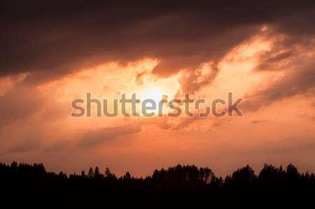 Ateşli gün batımı siluet orman bulutlu gökyüzü Stok fotoğraf © Juhku