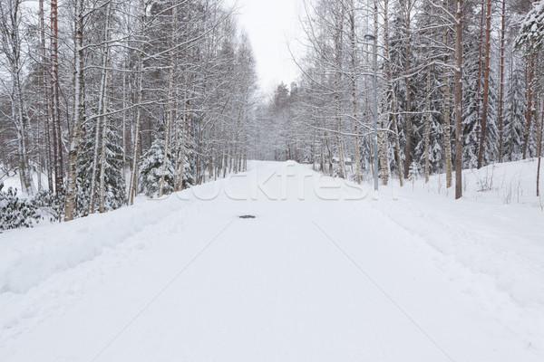 Strada parco inverno neve coperto bianco Foto d'archivio © Juhku