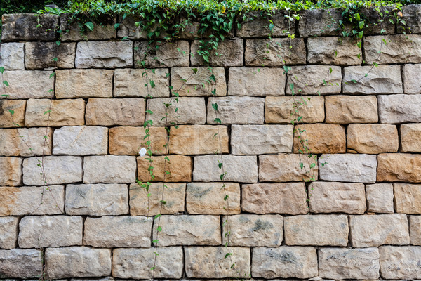 Big bricks and vegetation background Stock photo © Juhku