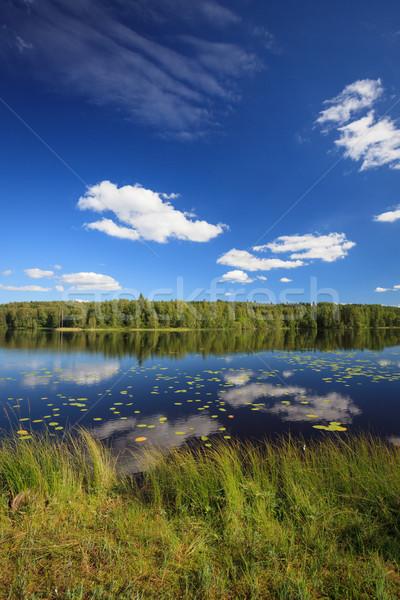 Napos tó tájkép Finnország higgadt víz Stock fotó © Juhku