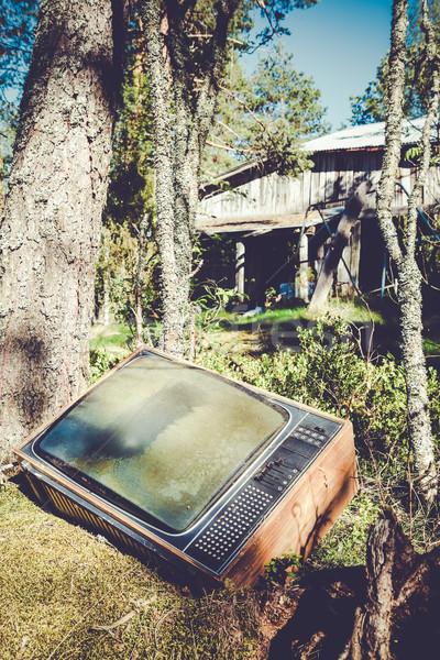 Foto stock: Velho · análogo · televisão · floresta · abandonado · natureza