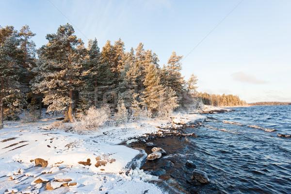 Lakefront at winter Stock photo © Juhku