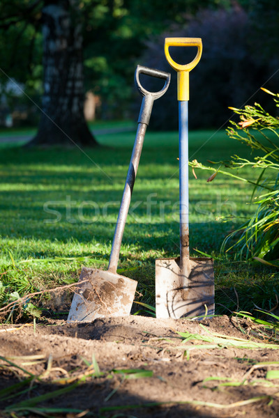 Two shovels in ground Stock photo © Juhku